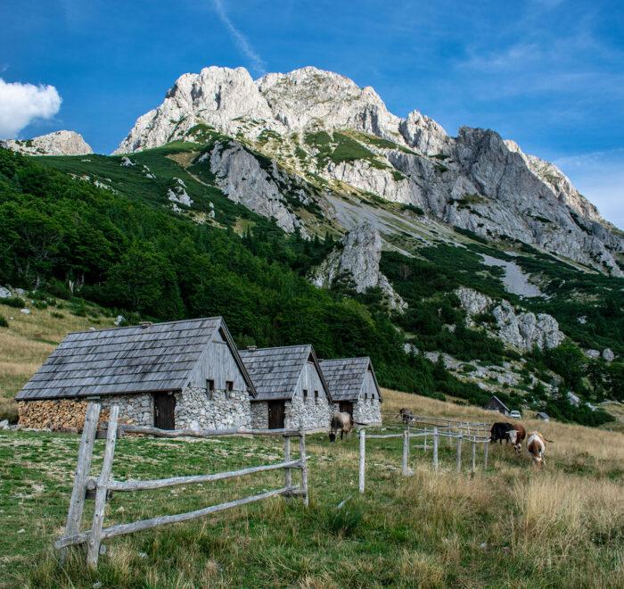 Plateu Prijevor Sutjeska national park