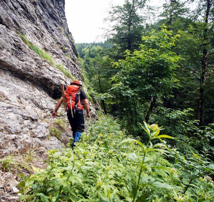 Perucica rainforest hiking
