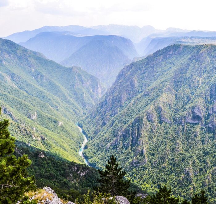 Vranovina Tara River Canyon