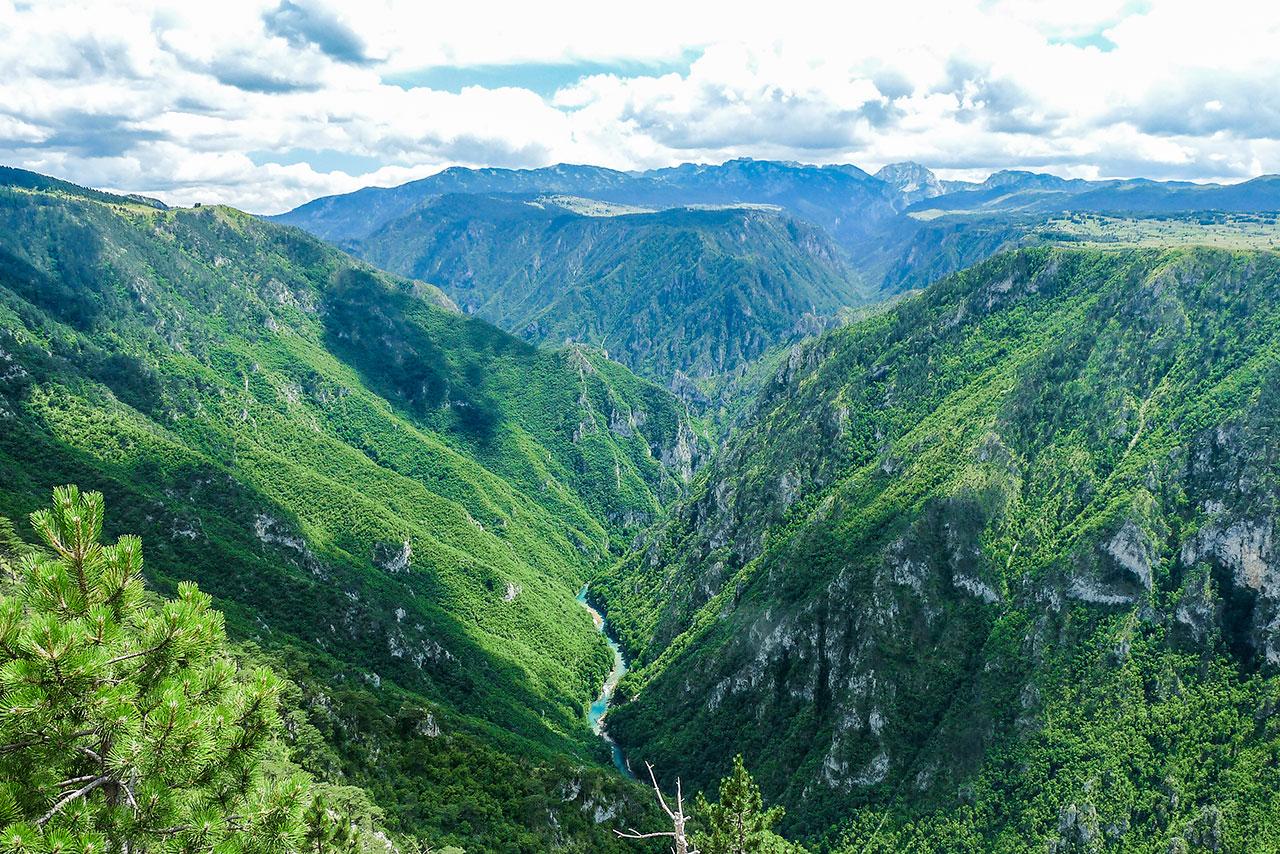 canyon of tara river view from vranovina